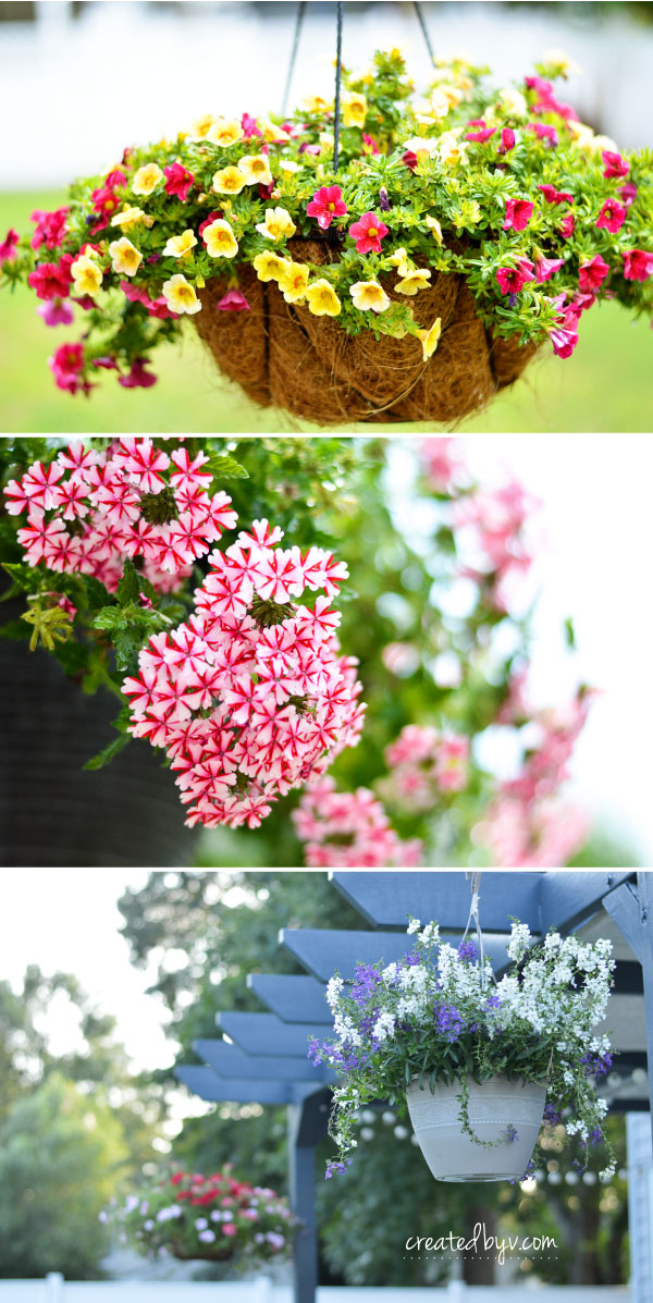 How To Make Flower Baskets For Hanging : How to make a hanging plant basket created by v