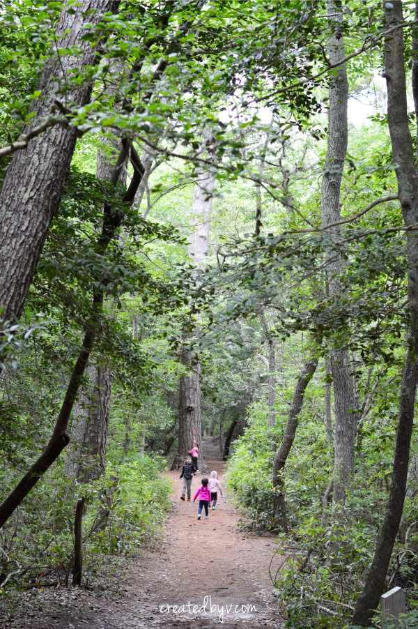 1. Take a nature walk. // Get outdoors with the kids this summer!