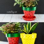 Fruit-Inspired Terra Cotta Pots