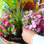 How to Make a Hanging Plant Basket