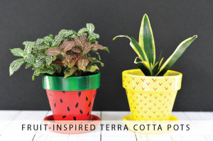 Fruit-Inspired Terra Cotta Pots